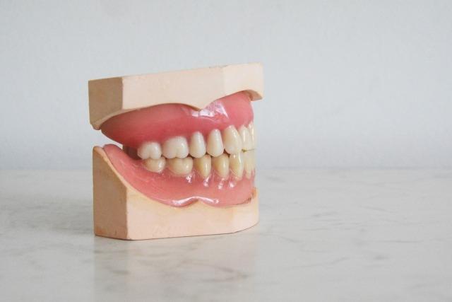 歯科技工士・技工所